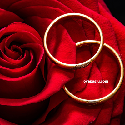 Rose and rings for dp