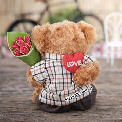 teddy bear with heart dp