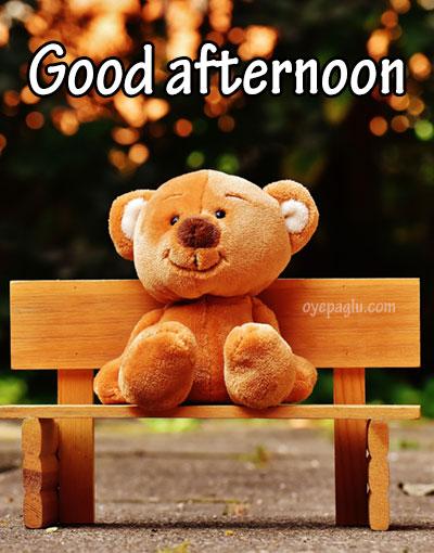 teddy goodafternoon image