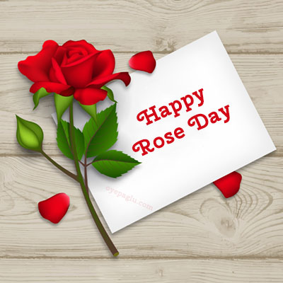 happy rose day cartoon image