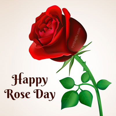 happy rose day only big rose