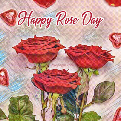 happy rose day special flower