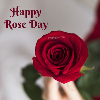happy rose day with hand