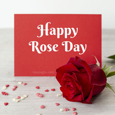 happy rose day with red rose