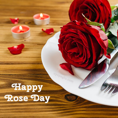 special night surprise happy rose day