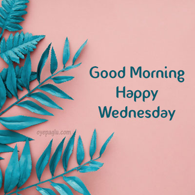 Blue border leaves good morning wednesday image