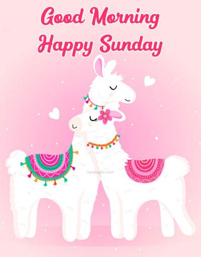 cartoon horse love good morning sunday image