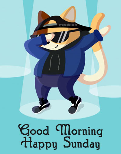 dancing cat good morning sunday image