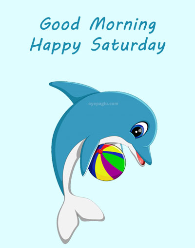dolphin with ball good morning saturday image