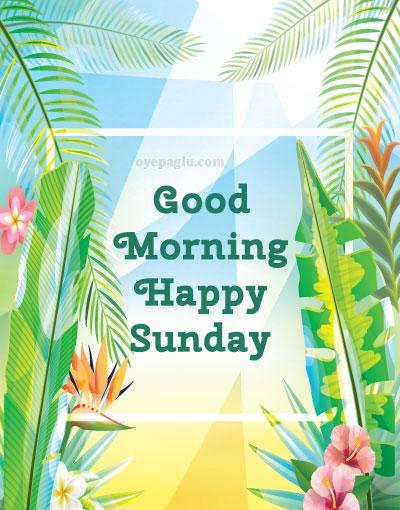 leaf good morning sunday image