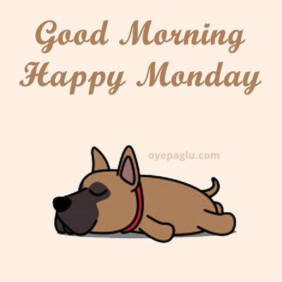 lezy dog good morning monday image