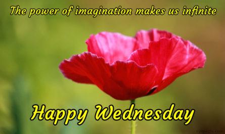 Wednesday blessings