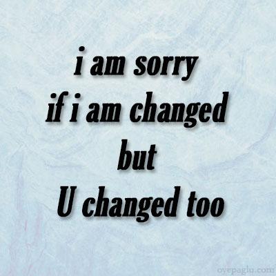 i'm sorry dp