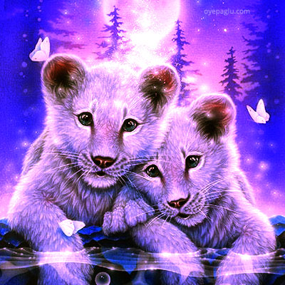 Together White Lions Stylish dp