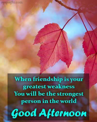 friendship quotes good afternoon wishes