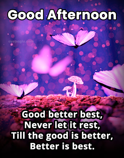 good better best good aftenoon wishes