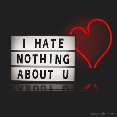 i hate nothing about you dp
