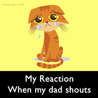 my dad shouts crying cat meme