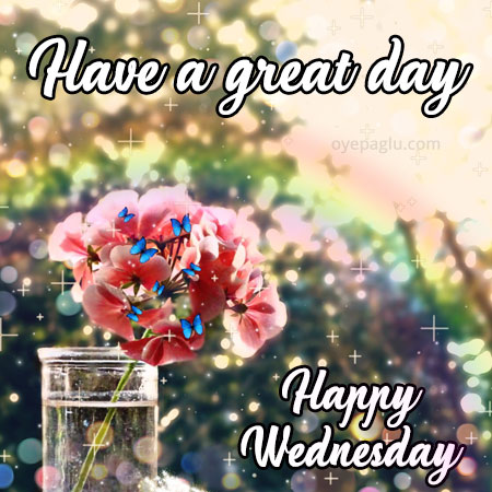 have a great day happy wednesday
