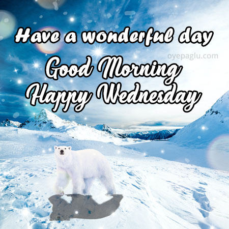 have a wonderful day happy wednesday